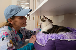 Crystal Hall, a volunteer from Canada, petting a cat in a cat bed