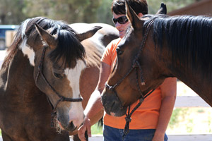 Trainer with Fiona the horse and another horse