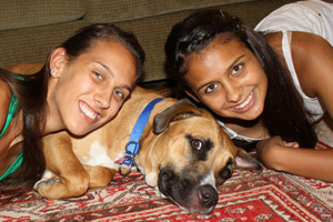 Boxer and bullmastiff mix with two girls
