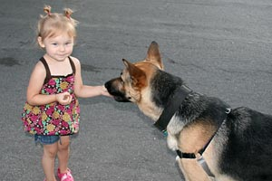 Zero the dog accepting treats from a young girl