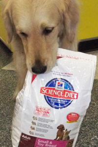 Dog carrying a bag of Science Diet dog food