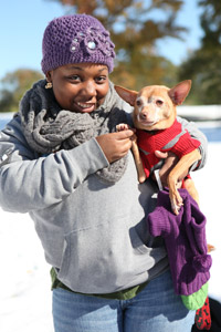 Chihuahua wearing a sweater with a woman