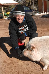 Hazel the pig who has mechanical blindness with a caregiver