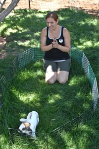 Jamie and a rabbit