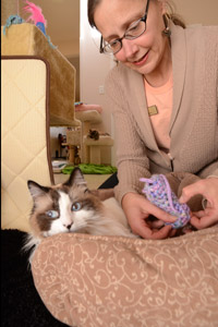 Caregiver putting on a legging on Montana the special-needs cat's foot to stop him from chewing on it