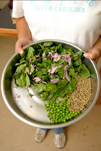 Leafy greens, peas, and other healthy foods for a pig