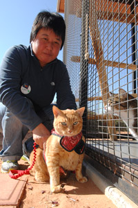 Roberta Fong from Malaysia with an orange tabby cat at Best Friends Animal Sanctuary