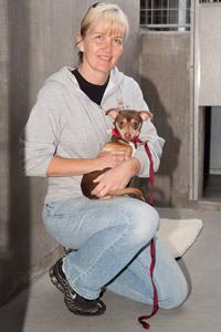 Volunteer Kym Cloughesy with Kibbles the Chihuahua