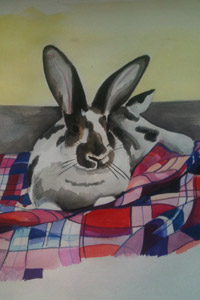 Another rabbit portrait by talented artist Courtney Link