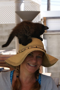 Little kitten playing on a woman's hat
