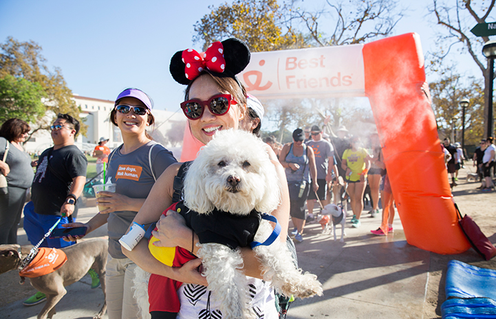 Strut Your Mutt, small white dog being held by person in Minnie Mouse ears