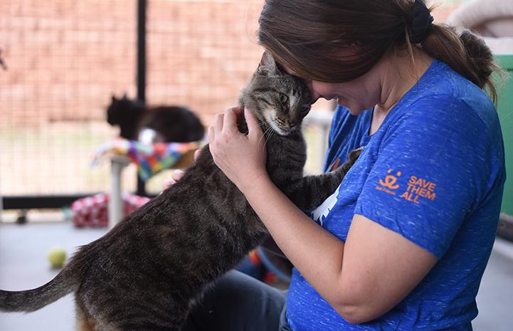 Major the cat started to reveal his true self to caregiver Kristen Kolar