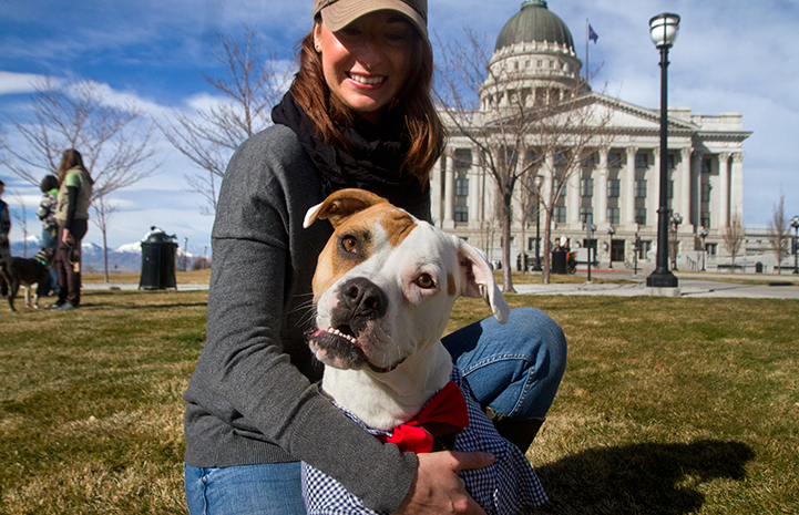 Woman and pit bull terrier in advocating on behalf of dogs