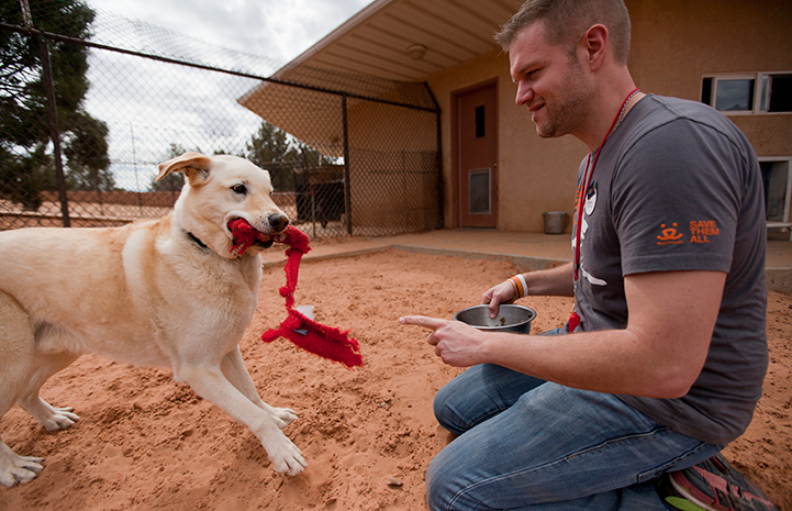 Man volunteering at Dogtown