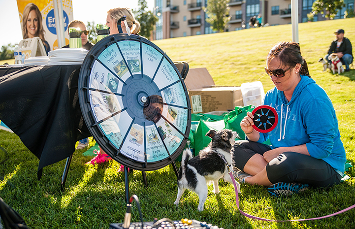 Woman with dog spinning a prize wheel at Strut Your Mutt
