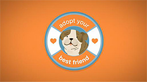 Adopt your best friend