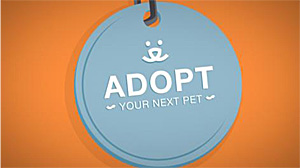 Adopt Your Next Pet