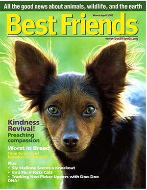 Cici on the cover of the Best Friends magazine