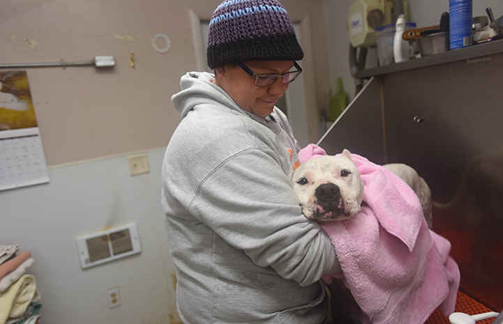 Ralph the dog and the other Dogtown residents get the soft touch when it's bath time