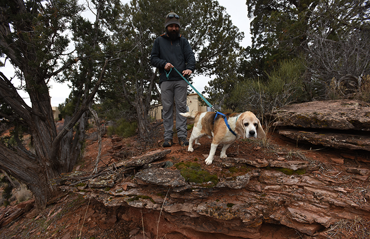 Gus the beagle was hiking the half-mile trail with a spring in his step and his long ears flapping in the breeze