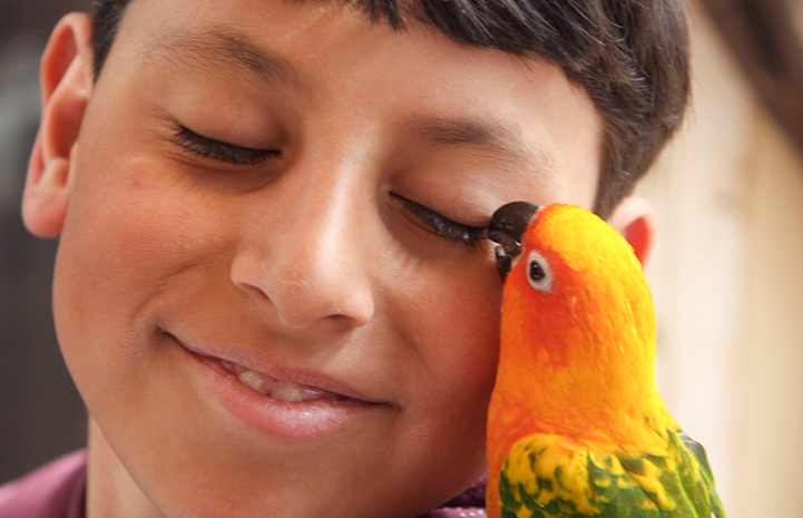Best Friends Day 2016: Timella the parrot and a young boy