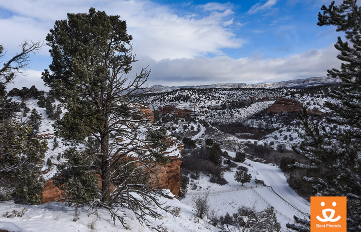 A fresh layer of snow blanketed Angel Canyon