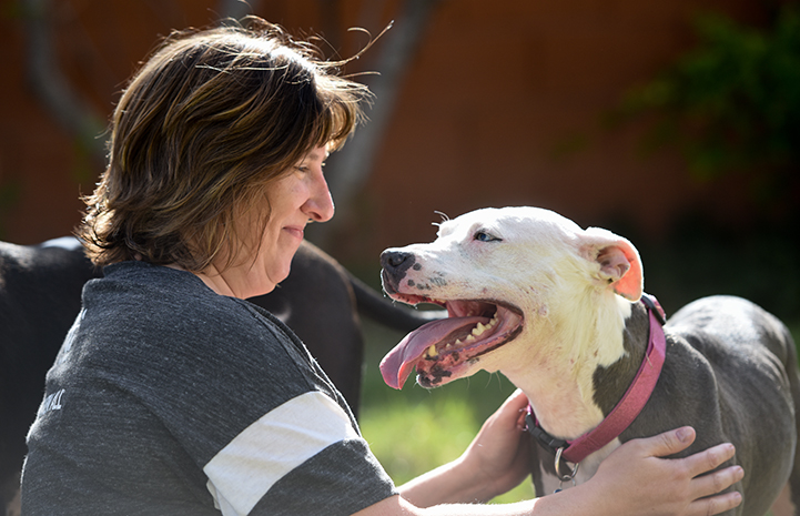 Trinity the pit bull terrier mix, who was likely a former fighter bait dog, with Leslie