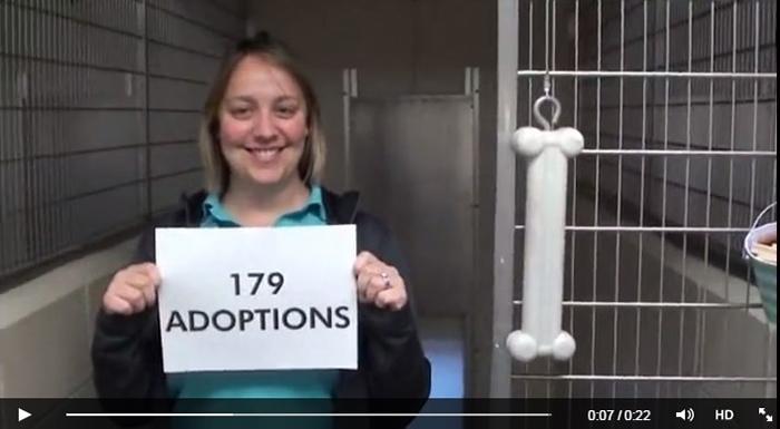 Kentucky Humane Zappos thank-you video