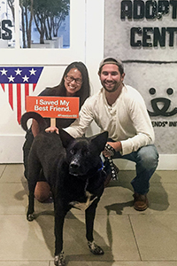 Batman the Australian and kelpie mix at NKLA Pet Adoption Center was adopted