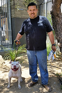 Dude, a handsome white pit bull terrier mix, went home with a new dad