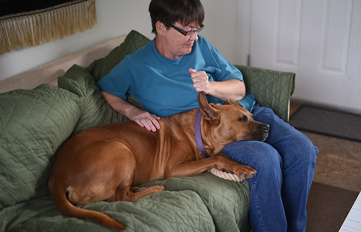 Ann Janssen on a sleepover with Hoagie the dog who has lupus