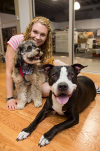 George the pit bull terrier mix got a second chance