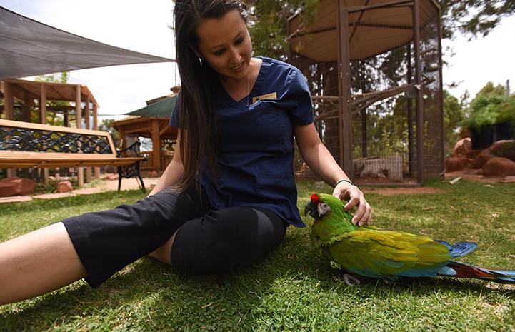 Parrot Garden caregiver Kaila Huhtasaari with Louie the military macaw