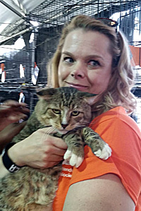 Huey the brown tabby practically sold himself at the NKLA Super Adoption