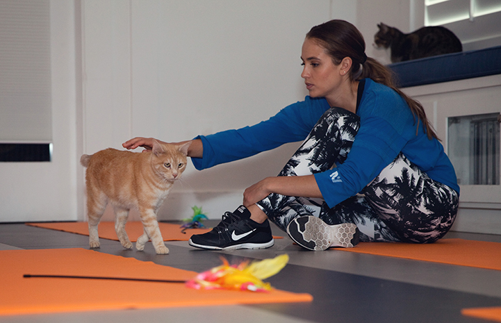 Woman taking a break from yoga to pet an orange tabby cat wandering by