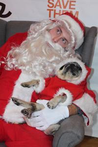 Even Santa Claus visited the New York Super Adoption