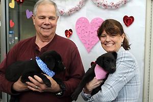 The Back in Black adoption promotion spotlights black and mostly black pets