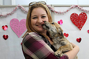 In all, 1,007 Dallas Animal Services pets went home through the promotions in 2014.