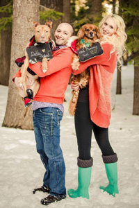 Pippa the red spaniel with her new family