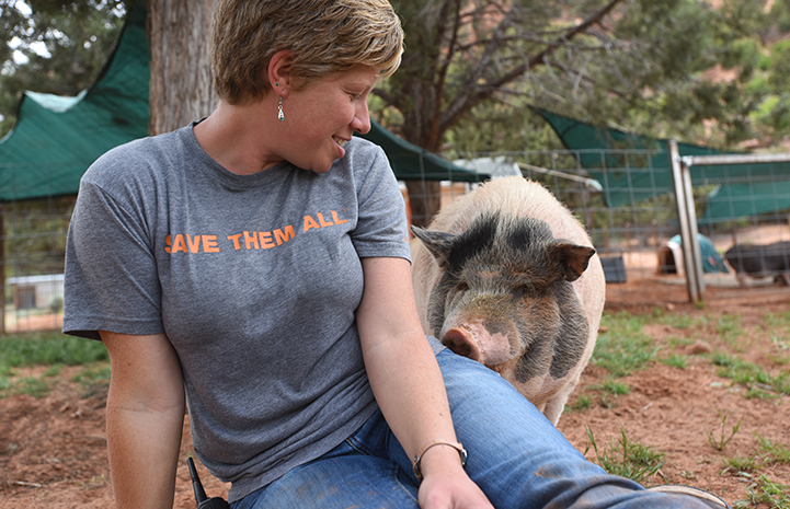 Molly the potbellied pig with Marti, office coordinator for Horse Haven and Marshall's Piggy Paradise