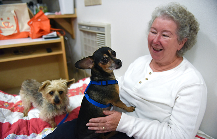 Cathy Calure enjoying time with Yorkshire terrier Samantha, a puppy mill survivor, and her dog friend Pepe