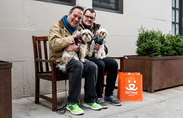 David Johnston and Danny Costa on a bench with Sunny and Moon, two senior shih tzus