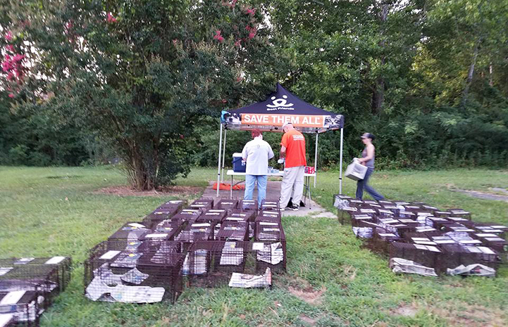 Humane traps are ready to start catching community cats for TNR