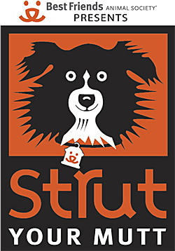 2011 Strut Your Mutt logo