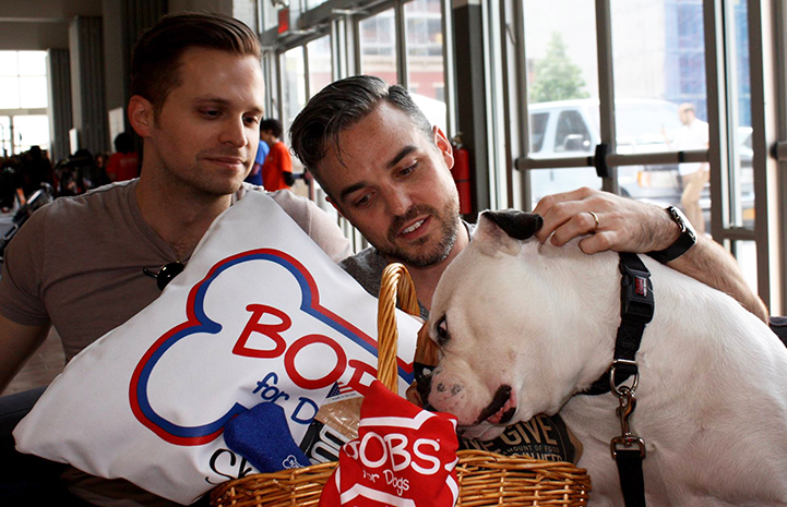 Minnie's adoption caused an extra round of cheering, plus her new parents received a giant celebration package from presenting sponsor BOBS from Skechers