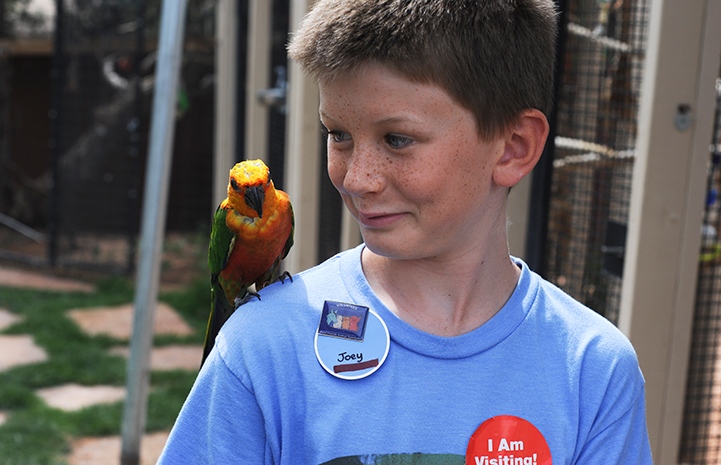 Parrot grateful for volunteers at Thanksgiving