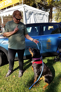 Millie the dog and Trish the military veteran get training together