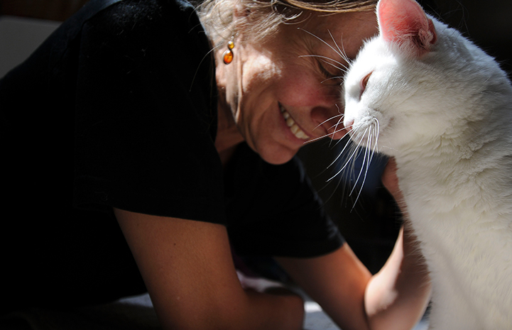 Best Friends Animal Sanctuary is southern Utah pet lovers' paradise