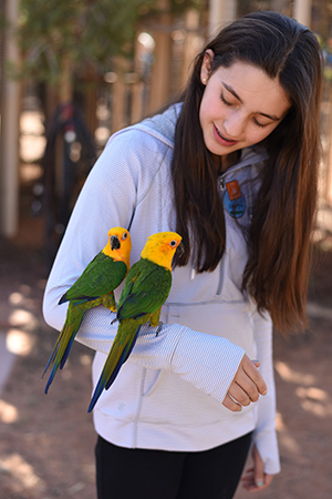 Volunteer Georgia with Mork and Mindy at Parrot Garden