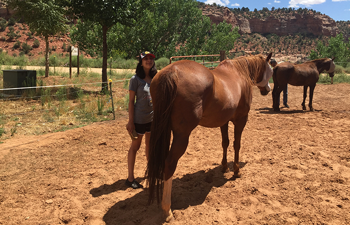 Volunteer Hailey Shah at Horse Haven
